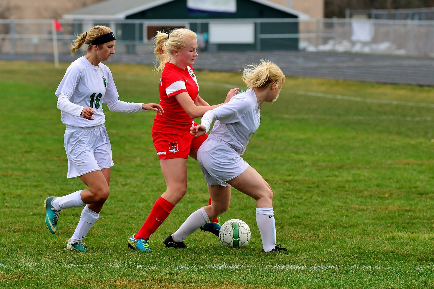 Alayna Franson and Kylie Preul fight to strip the ball from a Pulaski player.